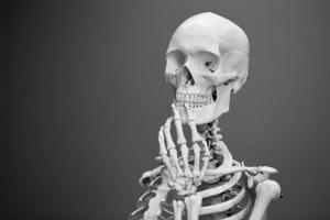 kolagen in kosti